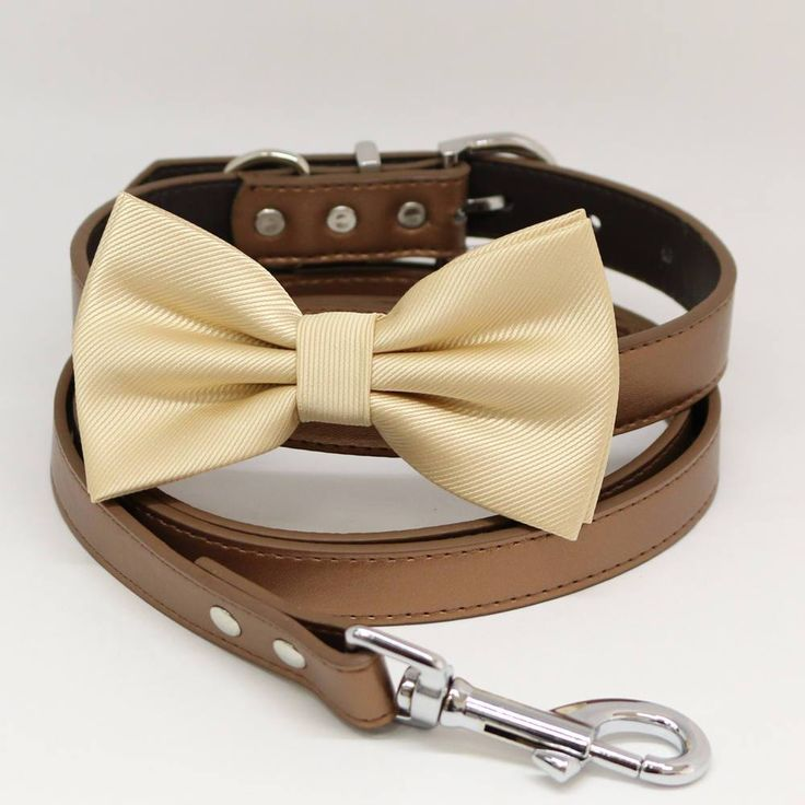 Dog Bow Tie collar and Leash, Ivory Bow tie, Copper Leash, Handmade, Pet wedding