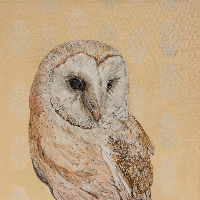 "Image of ""Mr HAWKSBERRY"" Barn Owl"