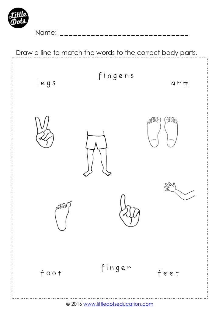 Body parts matching worksheet for preschool, pre-k and kindergarten ...
