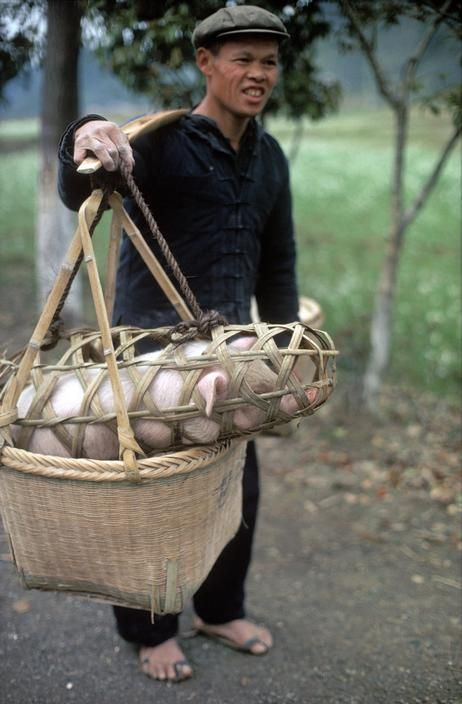 CHINA, Kweilin. Peasant coming home form market. 1979.