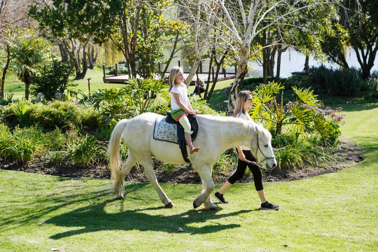 free pony rides every weekend @Rhebokskloof