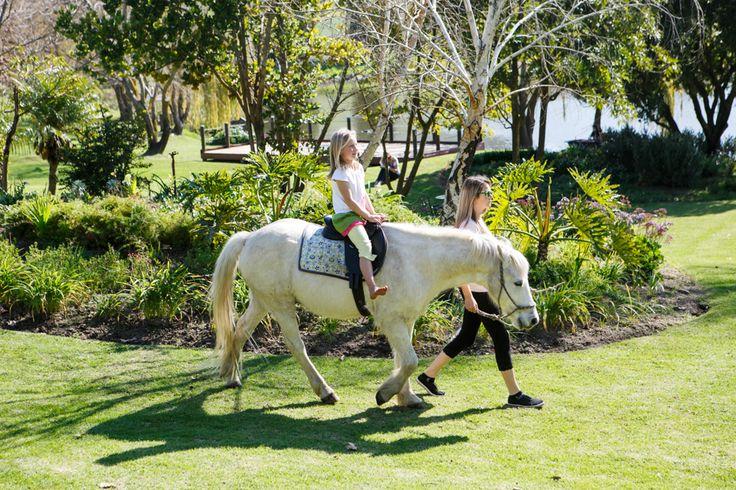 free pony rides every weekend @Rhebokskloof