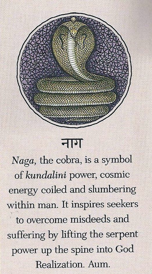 drawing the apana air upward, he should unite it with prana. when it is led upward with the kundalini power, he is released from all sins -Goraksha-Paddhati