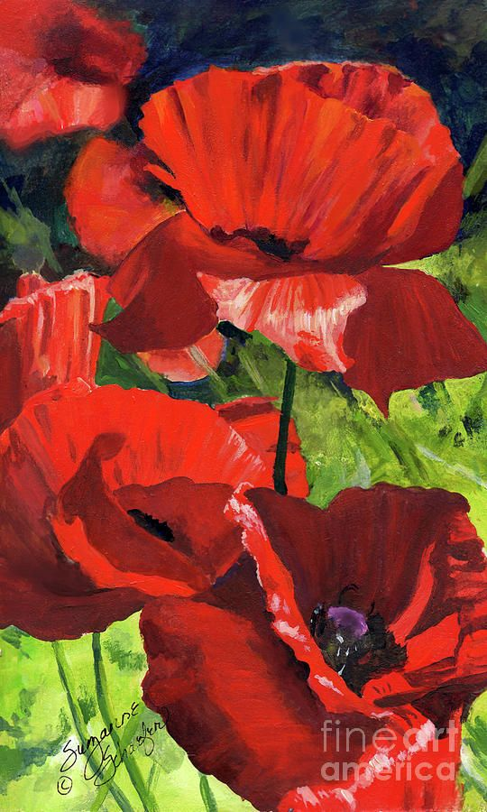 Red Poppies Painting  - Red Poppies Fine Art Print by Suzanne Schaefer