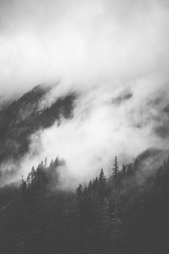 Forest fog art print, forest mist, black & white art photography, contemporary wall art, mountain art, modern wall art, scandinavian art
