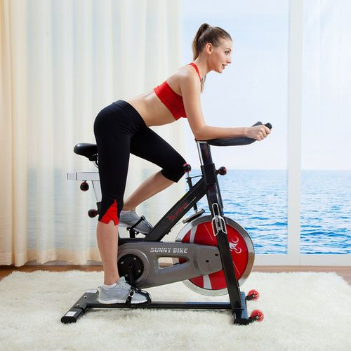 Sunny Belt-Drive Indoor Cycling Exercise Bike