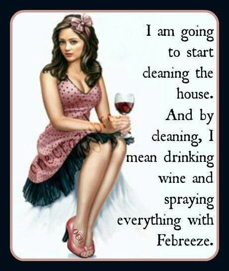 Cleaning = Wine & Febreeze...  I kind of REALLY want to be in a pinup girl poster of this.