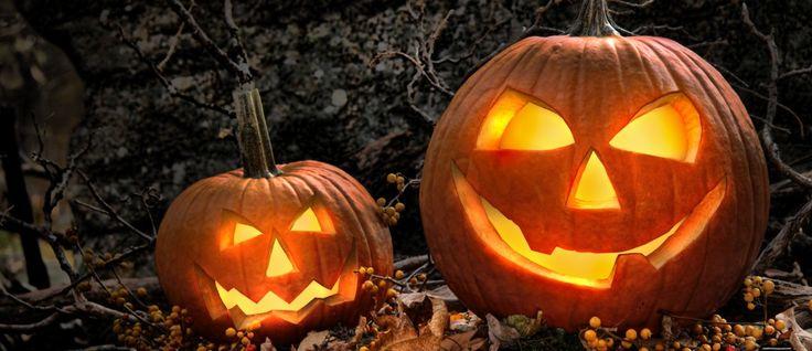Kürbisgesichter, Kürbis schnitzen, Schnitzvorlagen zu Halloween - Halloween Party Tipps und Dekoration von halloweenies.de