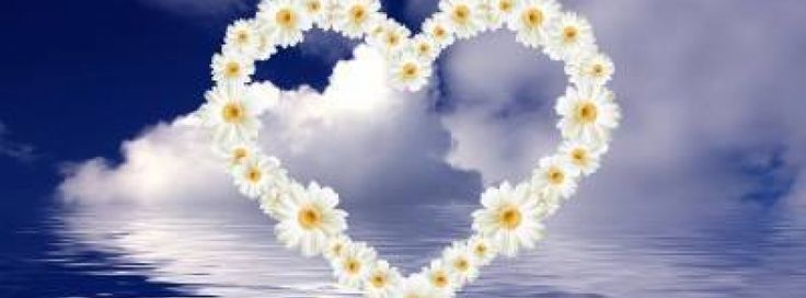 Flowers Heart Facebook cover - Facebook timeline covers maker