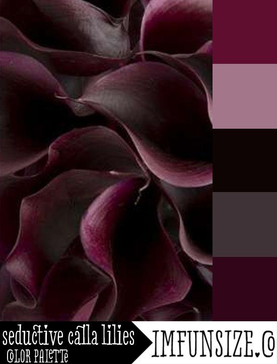 Seductive Calla Lilies Color Palette