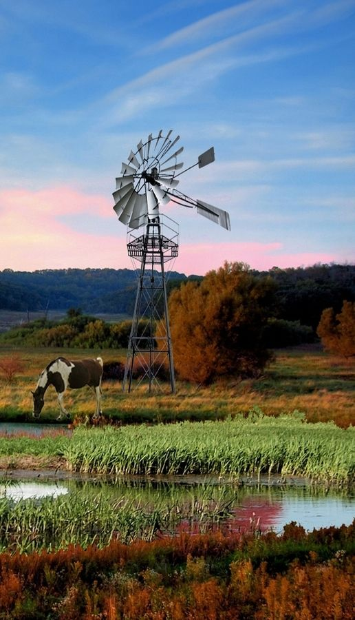 Country Living ~ Windmill