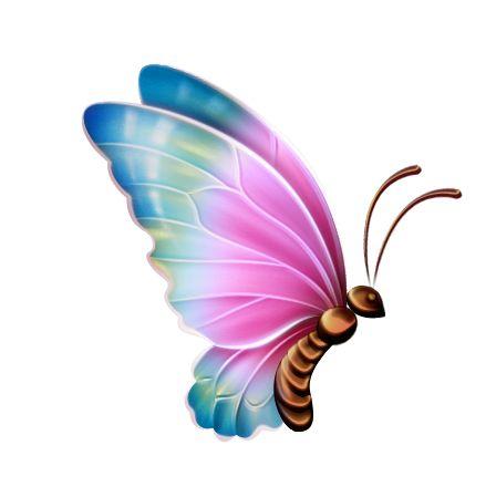 دخلت الفراشه جميع القلوب  دخلت الفراشه جميع القلوب دخلت