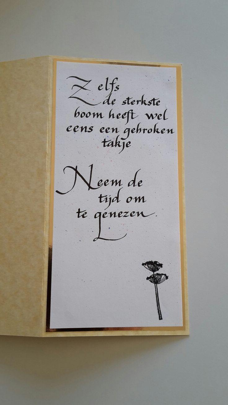 eigen werk Ann Vanhollebeke