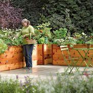I love this, no back breaking bending over.: Gardens Ideas, Gardens Boxes, Rai Beds Gardens, Raised Beds, Raised Gardens Beds, Cedar Rai, Elevator Cedar, Rai Gardens Beds, Gardens Design