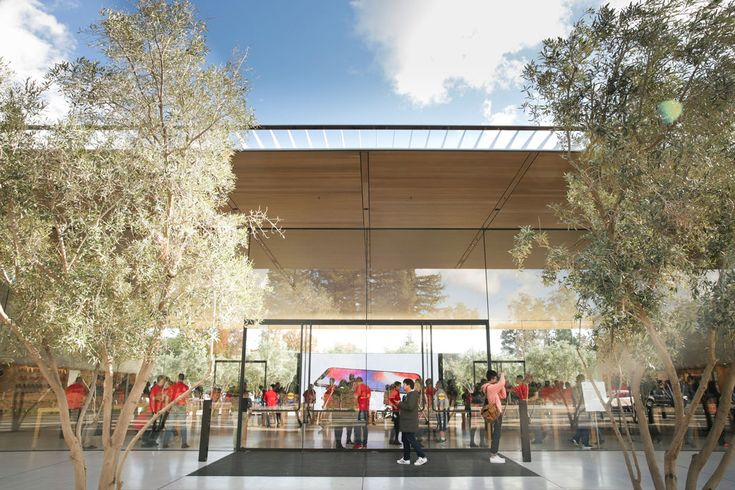 FOX NEWS: People keep walking into glass at Apple Park