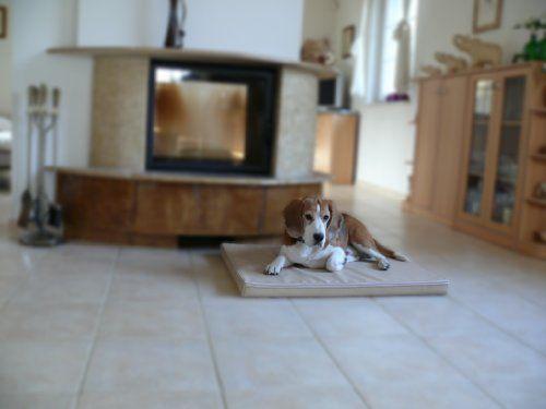 Aus der Kategorie Betten  gibt es, zum Preis von EUR 65,00  Hundematte MARLEY Wir bieten Ihnen die abgebildeten Hundebetten in 4 Größen und in verschiedenen Farben an. Das Hundebett ist aus Kunstleder Das Bett ist robust & bequem - sehr gut für alle Hunde. MARLEY M (70 x 90cm) für mittlere Hunderassen - bis ca.45cm, Cocker Spaniel, Beagle, Whippet, Mittelpudel , Bullterrier MARLEY L (90 x 120cm) für große Hunderassen - bis ca.55cm Border Collie, Labrador u. Golden Retriever, English Setter…