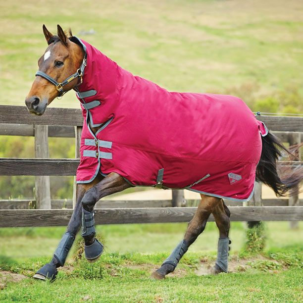 Saxon 600 Combo Heavy Turnout Rugs Horse Equestrian Derby House Blankets Pinterest Supplies And