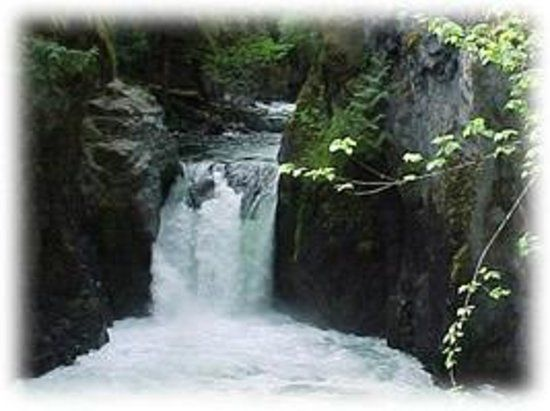 Book your tickets online for Englishman River Falls Provincial Park, Nanaimo: See 391 reviews, articles, and 218 photos of Englishman River Falls Provincial Park, ranked No.1 on TripAdvisor among 70 attractions in Nanaimo.