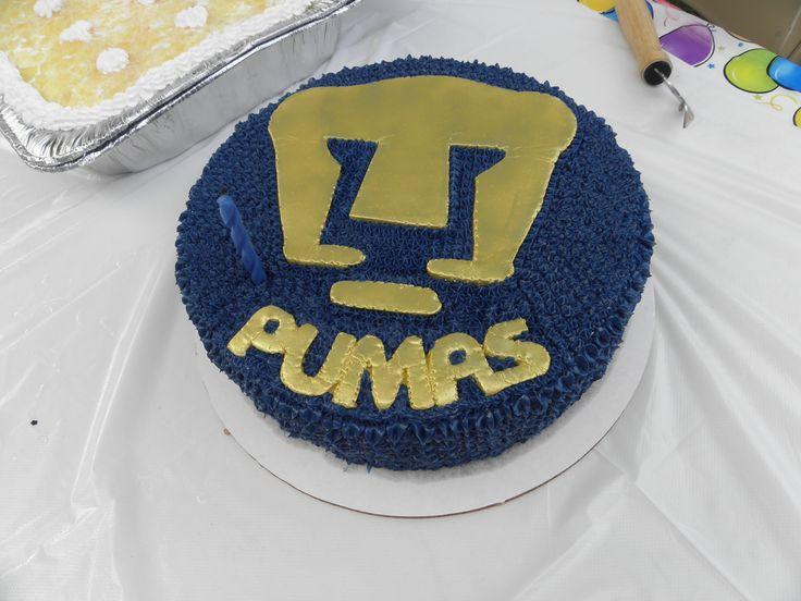 Pumas Cake My Cakes Pinterest Pumas And Cakes