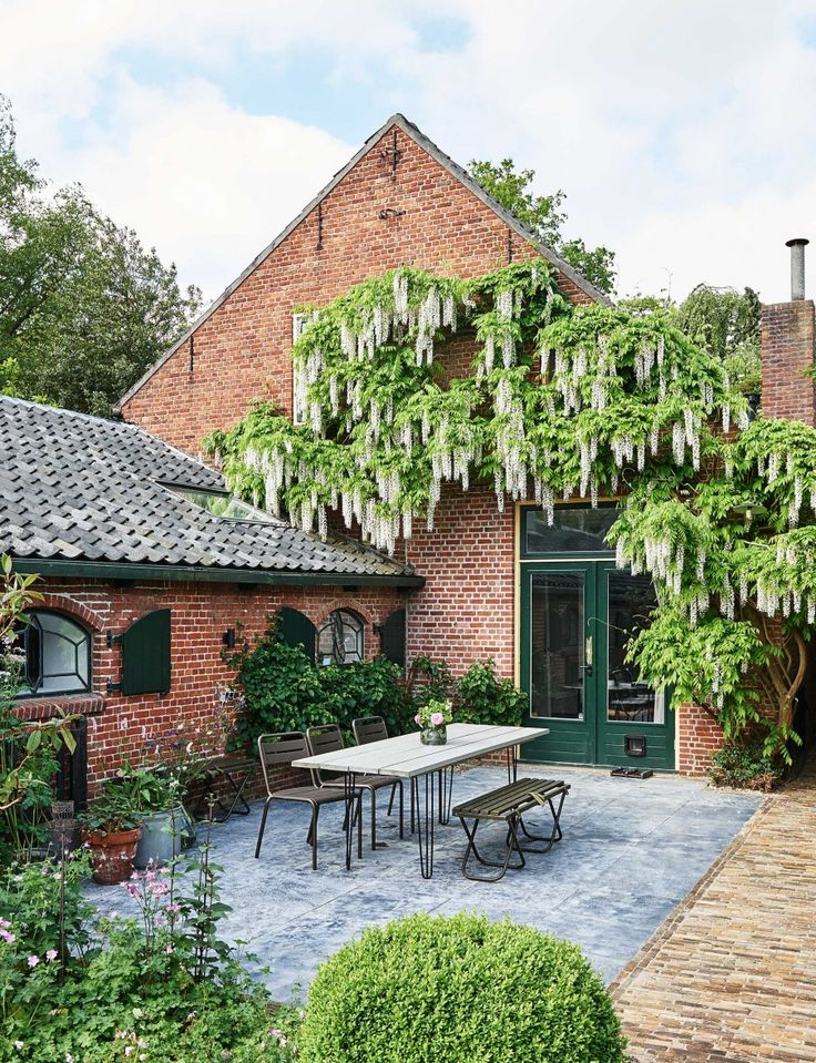 #courtyard #wisteria