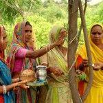 http://www.lepetitshaman.com/?p=3842 Inde : Ce village plante 111 arbres quand une fille naît