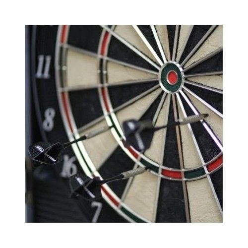Cabinet- arachnid- electronic- dartboard- dart- game- arcade -style- board- cricket- new- wood- pro- 800- darts- set- tip- soft. Up to 8 players can play cricket, 301, and 34 different amusements with 211 energizing varieties. | eBay!