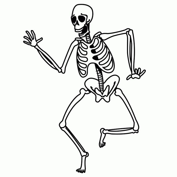 43 best images about coloring activities science on for Skeleton coloring pages to print