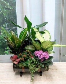 Cofre pirata con flores variadas para adornar tu casa.