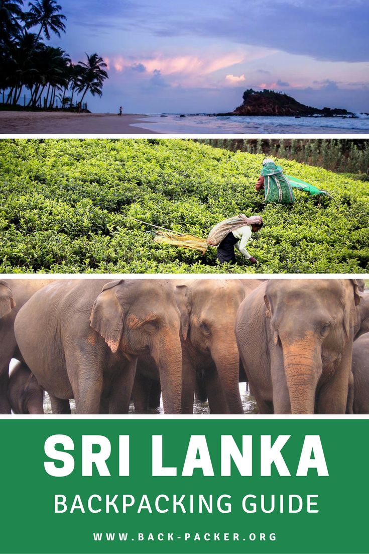 A complete guide to backpacking Sri Lanka. Best places to visit including Colombo, Kandy and the central Highlands + the most pristine beaches and tips on what to eat and drink, how to stay safe, and how to budget for your trip. Travel in Asia. | Back-Packer.org