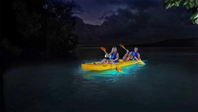 Nighttime kayaking at bioluminescent bay - Laguna Grande, Fajardo, Puerto Rico - CHECK!