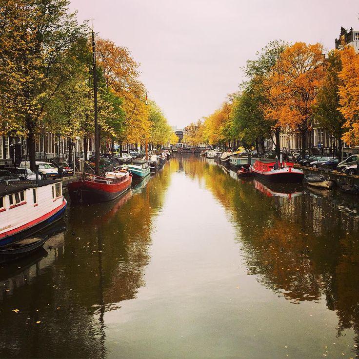 #amsterdam #iamsterdam #postcard #igersamsterdam