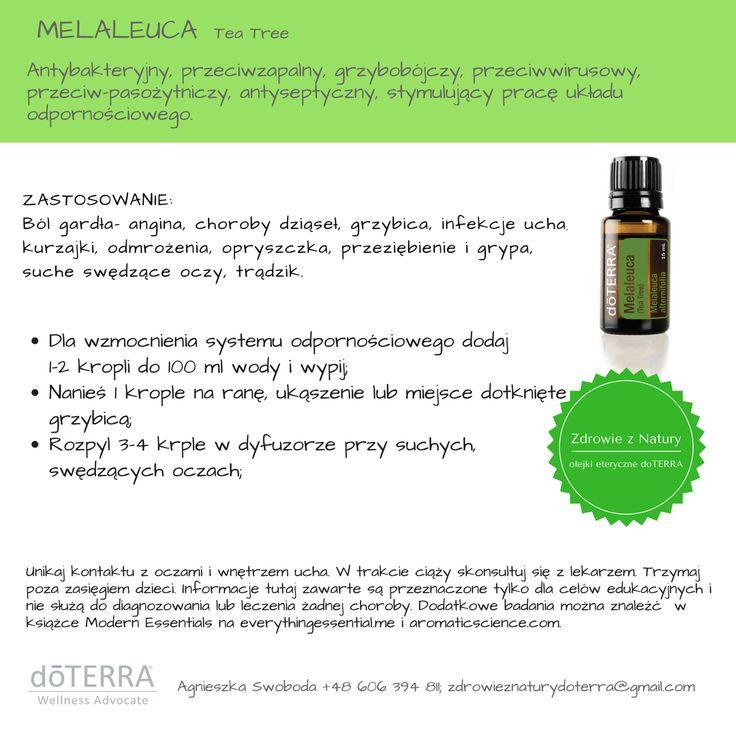 melaleuca; drzewko herbaciane; olejki eteryczne, doterra