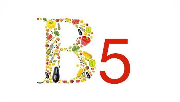 Keddi vitamintúra 6. rész: B5-vitamin (pantoténsav) | Fűben-fában egészség