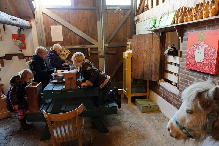 Petting zoo and Agri 't Hooivak Terschelling   A yard full of well-being HOORN