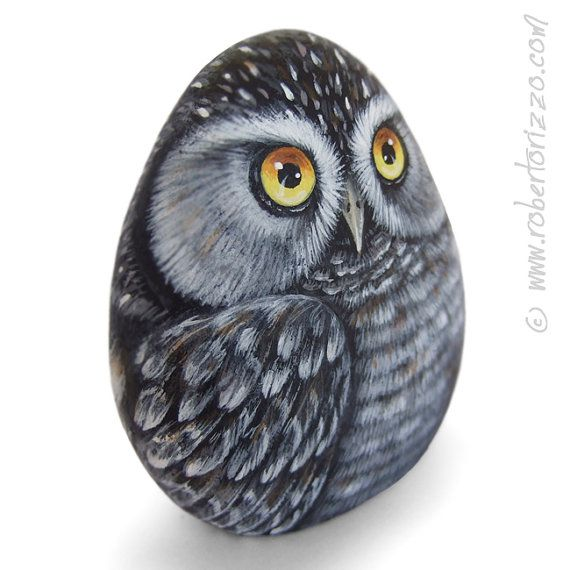 Original Hand Painted Northern Hawk Owl Rock Surnia Ulula