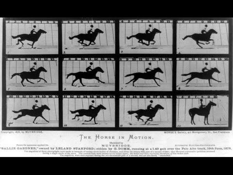 The Weird World of Eadweard Muybridge - YouTube