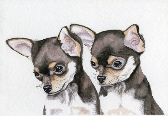 Dog Painting Chihuahua Puppies 5x8 Original by Earthspalette, $45.00  http://www.etsy.com/listing/89426739/dog-painting-chihuahua-puppies-5x8?ref=pr_faveitems