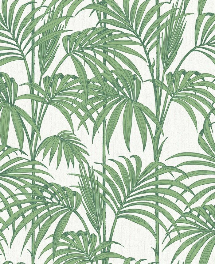 Honolulu vert palmier Wallpaper by Graham and Brown