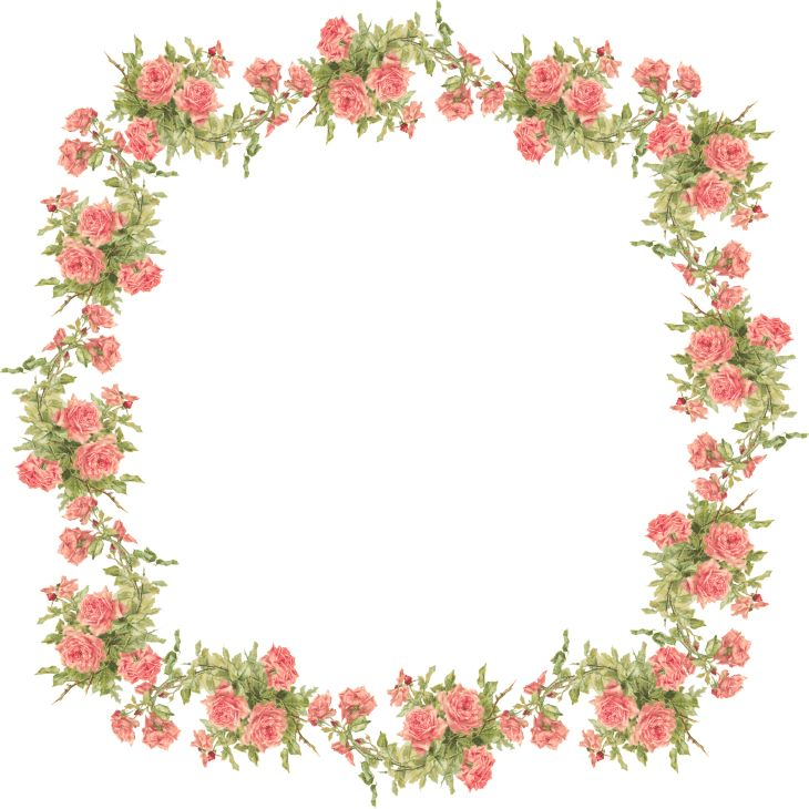 Крылья Whimsy: персик розы кадра - Екатерина Klein - PNG (прозрачный фон) - бесплатно для личного использования