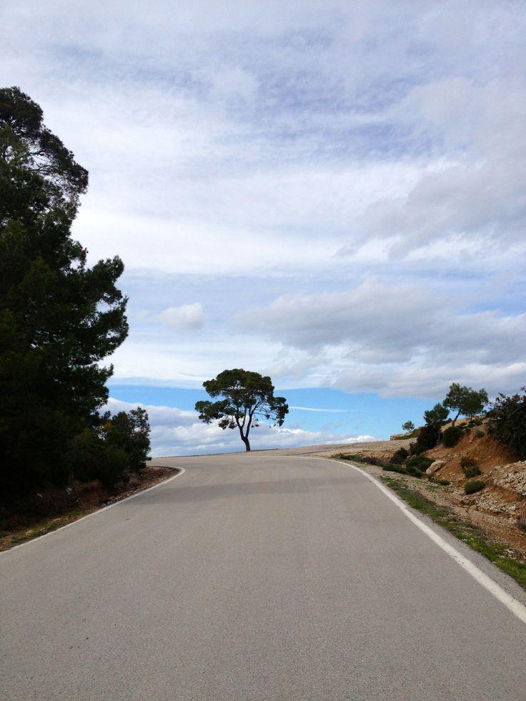 Bike around Spetses. #spetses #greece #greekislands