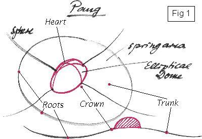 Old Panart diagram on steelpan tuning.