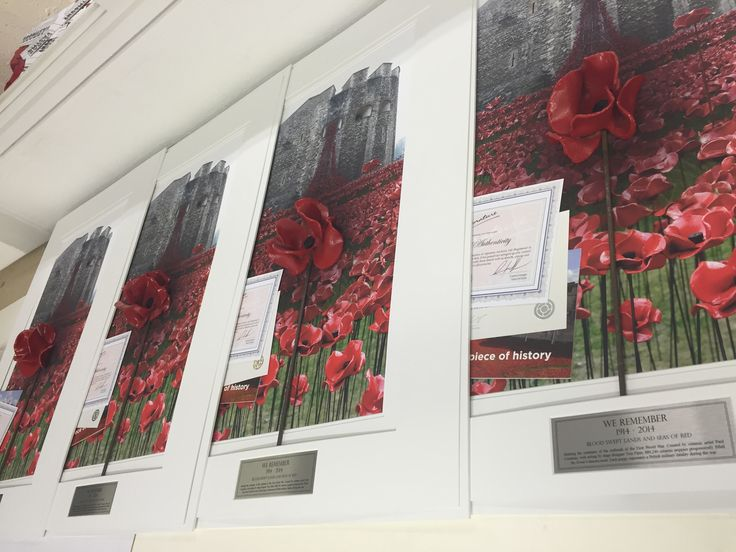 We love to start the week framing ceramic poppies form last year's display, Blood Swept Lands & Seas Of Red from the Tower Of London.