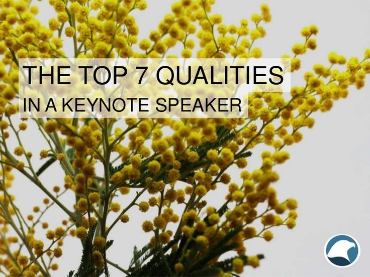 Learn how Eagles Talent Speakers Bureau can help you find the very best keynote speakers by looking for these 7 important qualities.