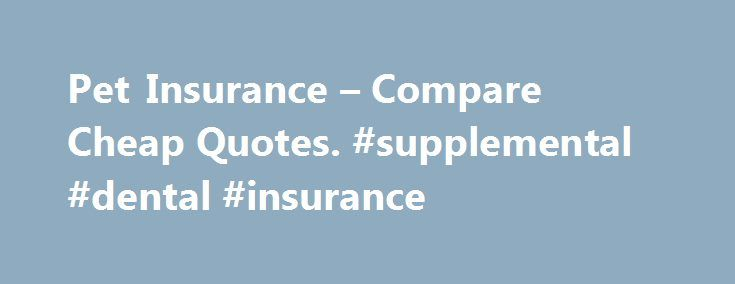Pet Insurance – Compare Cheap Quotes. #supplemental #dental #insurance http://insurances.remmont.com/pet-insurance-compare-cheap-quotes-supplemental-dental-insurance/  #compare pet insurance # Pet insurance Get cover for your cat or dog A selection of our trusted pet providers Pet insurance – do I need it? A pet policy protects the furriest (and arguably most adorable), member of your family. Should they suddenly need medical attention after an accident or illness, could you meetRead MoreThe…