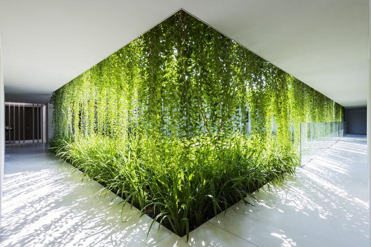Galeria - Spa Naman / MIA Design Studio - 2