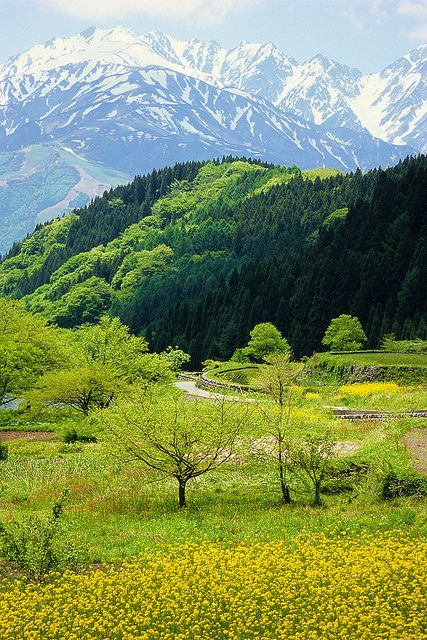 Northern Alps in Japan: photo by Go Uryu, via Flickr