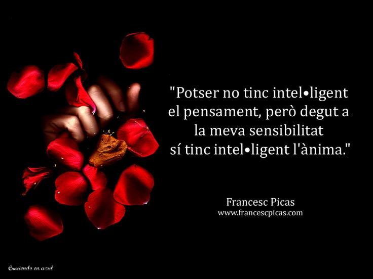 Francesc Picas © Frase Catalán