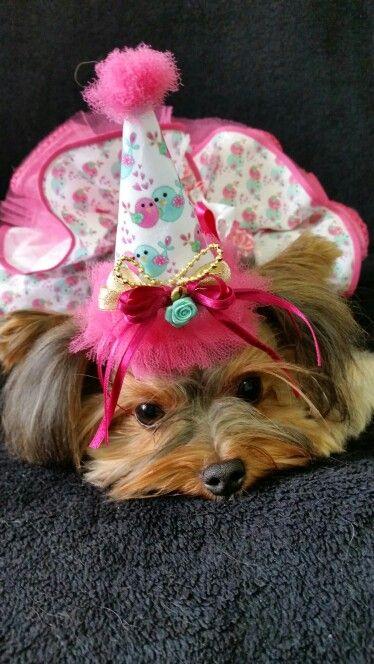 Happy Birthday Nina Maria by Bichopom