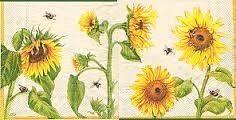 Kuvahaun tulos haulle auringonkukka piirros
