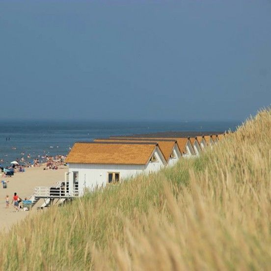 Holland Beach House Rentals: 790 Best Beach Destinations Images On Pinterest